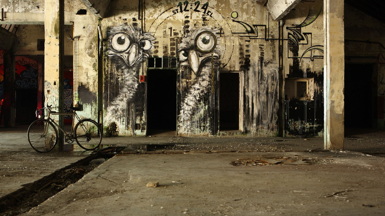 Painted-Birds-street-art-preview